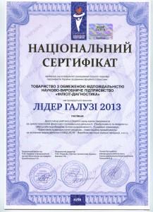 Сертифікат лідер галузі 2013